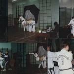 taekwon-do2